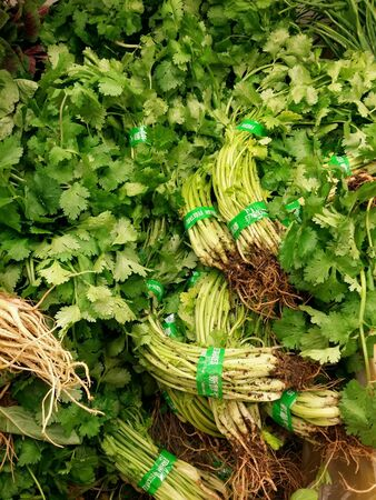 Fresh parsley leaves for retail at the market Stock Photo
