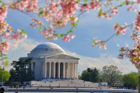 jefferson: Jefferson memorial in cherry bloom, Washington DC, USA Stock Photo