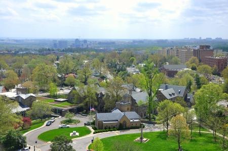 aerial animal: Aerial View of Washington DC, USA