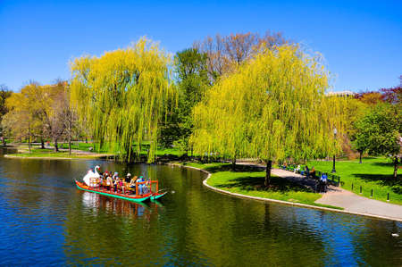 Sightseeing by Swan boat In Boston Public Garden, USA