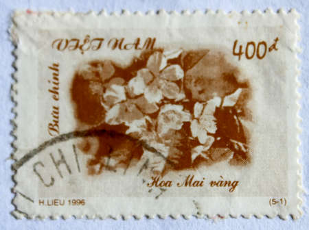 VIETNAM - CIRCA 1996: A stamp printed in Vietnam shows Yellow apricot flowers, circa 1996  photo