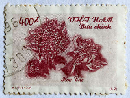 camomiles macro: VIETNAM - CIRCA 1996: A stamp printed in Vietnam shows daisies, circa 1996