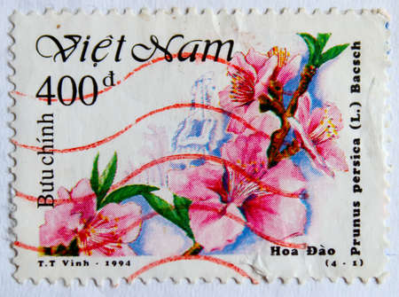 circa: VIETNAM - CIRCA 1994: A stamp printed in Vietnam shows peach flowers, circa 1994 Stock Photo