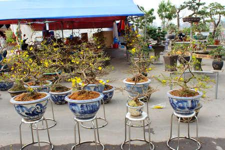 Asian peole in rural market photo