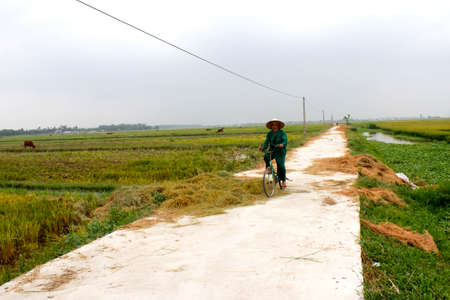 HAI DUONG, VIETNAM, AUGUST, 20: Asian man riding a bicycle on the road on August, 20, 2014 in Hai Duong, Vietnam.