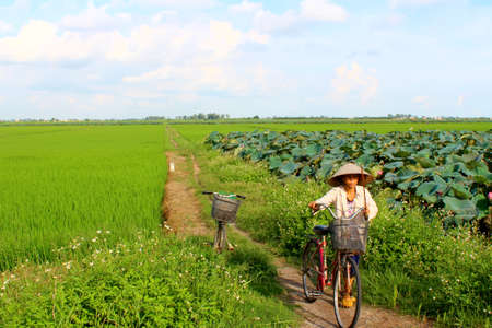 HAI DUONG, VIETNAM, AUGUST, 25: Asian woman riding a bicycle on the road on August, 25, 2014 in Hai Duong, Vietnam.