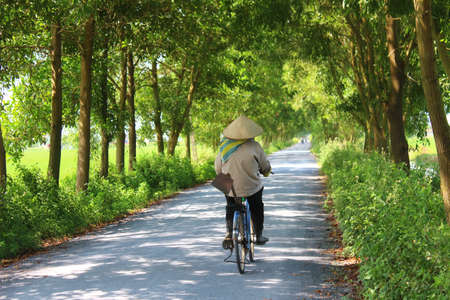 HAI DUONG, VIETNAM, AUGUST, 26: Asian woman riding a bicycle on the road on August, 26, 2014 in Hai Duong, Vietnam.