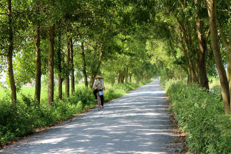 HAI DUONG, VIETNAM, AUGUST, 26: Asian man riding a bicycle on the road on August, 26, 2014 in Hai Duong, Vietnam.