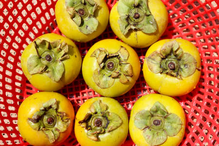 persimmons: The persimmons in the basket