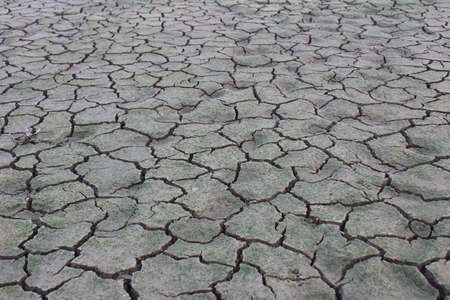 cleft: Drought disaster Stock Photo
