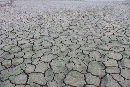 barrenness: Drought disaster Stock Photo