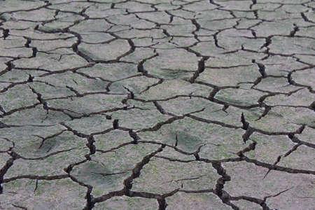 Drought disaster Foto de archivo