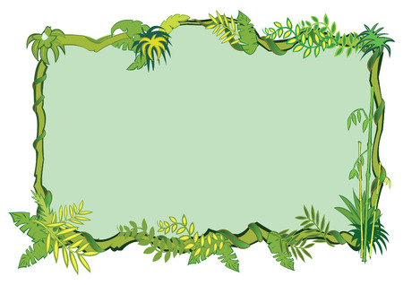 cartoon jungle: Jungle frame concept Illustration