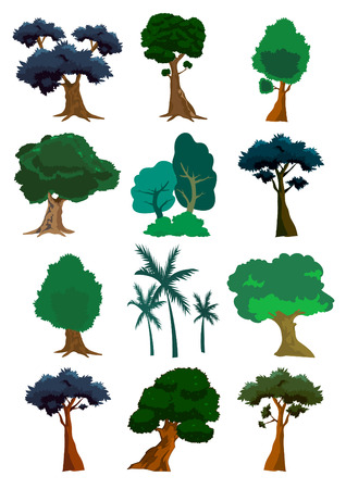 Assorted trees of nature illustration Stock Vector - 6992920