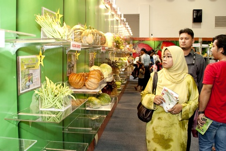 stockman: KUALA LUMPUR - NOVEMBER 30 : Visitors admiring vegetable on display during Malaysian Agriculture, Horticulture and Agrotourism Show (MAHA) on November 30, 2010 in Kuala Lumpur, Malaysia.