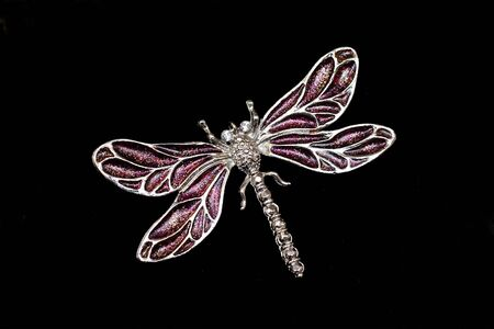 Dragonfly Jewelry Isolated on Black Background photo