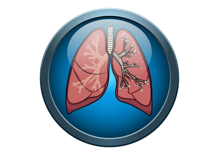 lung: Anatomy of Human Lung Illustration Medical Button Concept