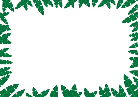 safari animal: Tropical Jungle Frame Concept