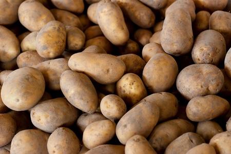 Fresh Pick Potatoes On Sale at Farmers Market photo