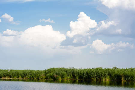Blue skies with clouds above the water, river bulrush photo