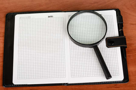 disclosed: Diary with blank pages, disclosed and lying on the table, pen Stock Photo