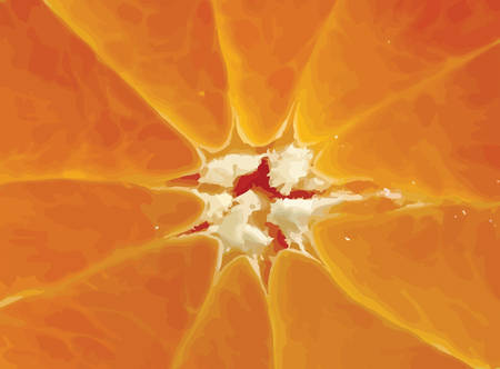 close-up of orange slice background Vector