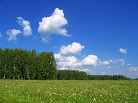 Summer landscape Stock Photo - 2694827