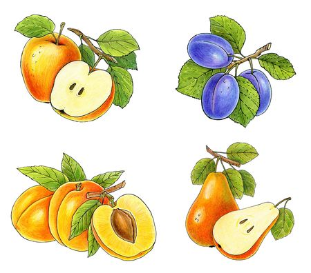 fruits collection isolated on white background  Stock Photo - 6902995