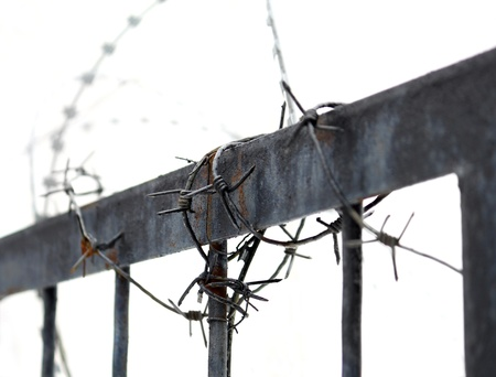 torture: Barbed wire on metallic fence