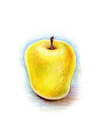 pencil drawing of yellow apple photo