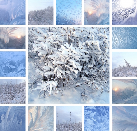 Collage of ice pattern on winter glass and plants under the snow