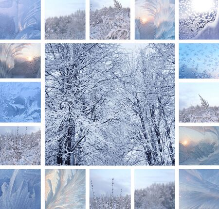 Collage of ice pattern on winter glass and trees under the snow photo