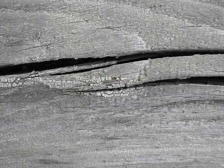 Very old wooden texture with large cracks photo