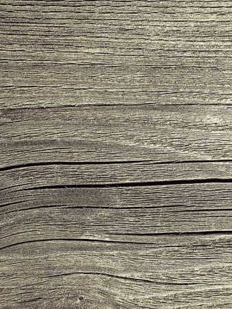 Texture of weathered wood photo