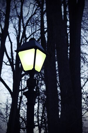 Street retro lighting against the evening sky and silhouettes of trees photo