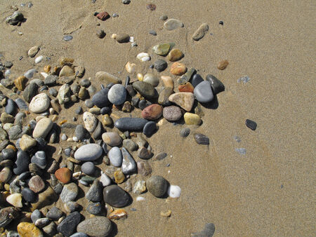 sandy soil: Wet sand background with sea pebbles