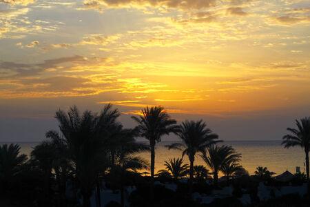 bounty: Paisaje de la hermosa mañana temprano, Mar Rojo, Egipto