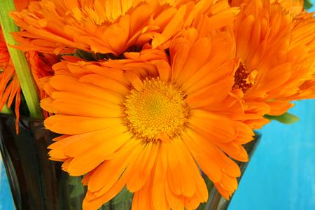 Closeup of bright Marigold flowers bouquet photo
