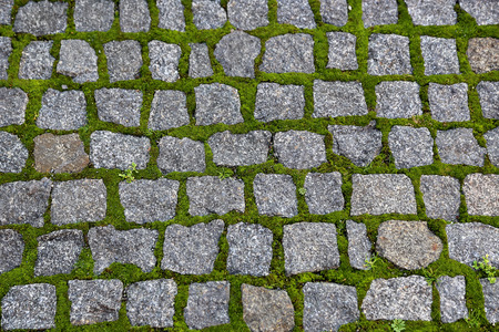 Texture of road paved with stones and sprouted green moss