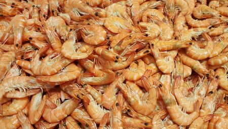 Raw fresh shrimp at the counter in the store, closeup