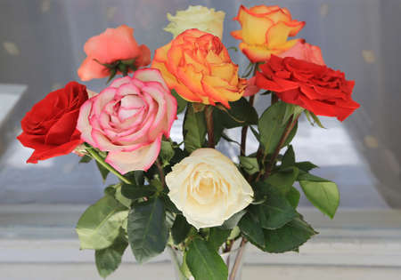 Bouquet of colorful wilting roses, close-up Standard-Bild