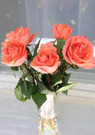 Beautiful bouquet of pink roses in a vase, closeup Standard-Bild