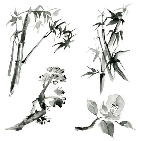Traditional oriental plants: bamboo, pine branch and rose, hand drawn ink sumi-e 版權商用圖片