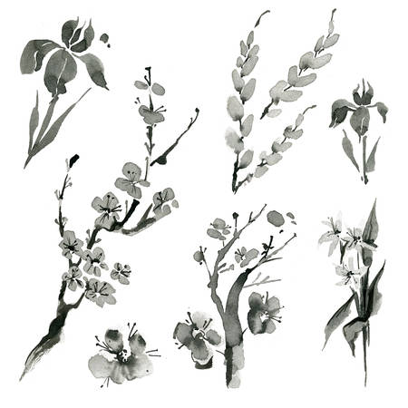 china watercolor paint: Traditional oriental plants: sakura, willow, cherry, iris, spica hand drawn ink sumi-e Stock Photo