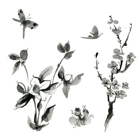china watercolor paint: Traditional oriental plants: sakura cherry roseship, hand drawn ink sumi-e Butterfly