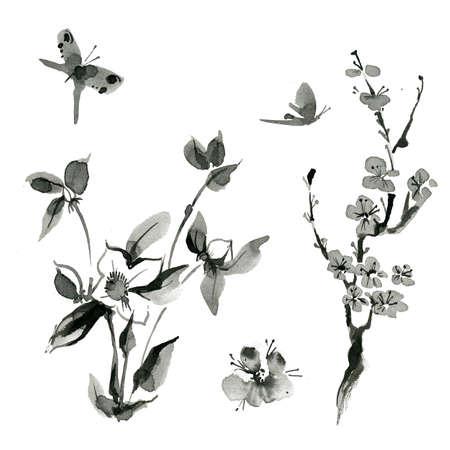 Traditional oriental plants: sakura cherry roseship, hand drawn ink sumi-e Butterfly