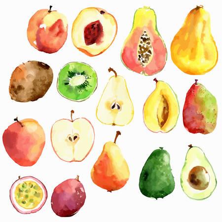 Bright vector watercolor fruits: apple, pear, peach, avocado, passion fruit papaya mango kiwi