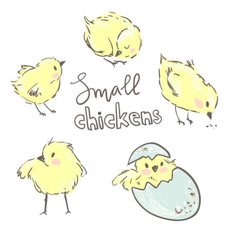Little yellow chickens. Set of cute characters. Illustration