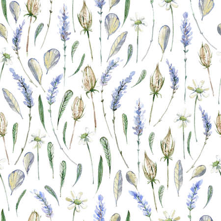 Watercolor realistic illustration. Floral seamless pattern. Prov