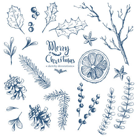 Vector hand drawn set of Christmas natural herbal elements. Mistletoe, citrus and fir-tree branches. Sketchy style.